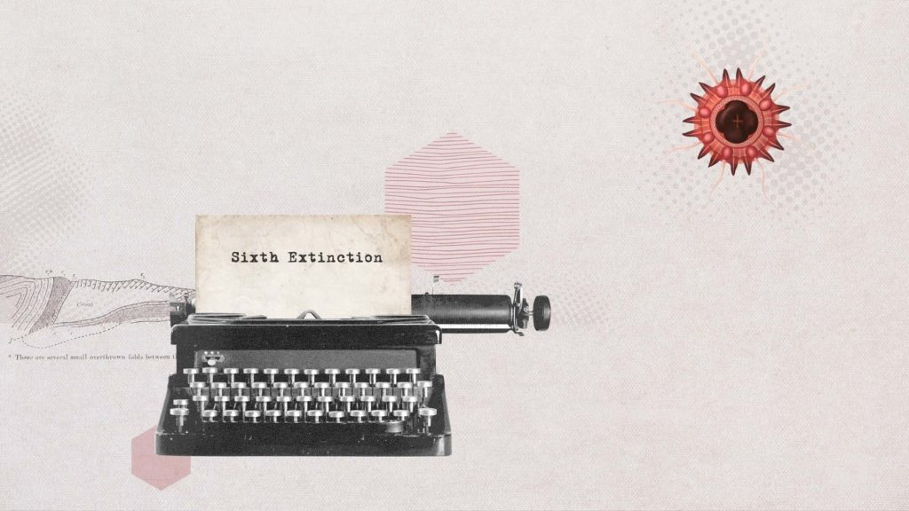 sixtinction_hires 06